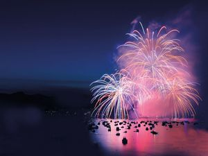 Feuerwerk am meer web