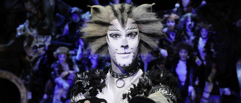 17136 1300x850 CATS 1 19 1 Produktionsfotos CATS 001 AlessandroPinna web